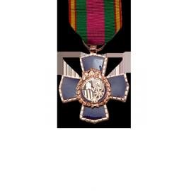 Medalla a la Dedicación al Servicio Policial, 20 Años (mediana)